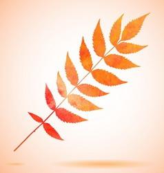 Orange watercolor painted leaf vector image vector image