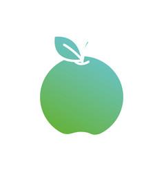 contour delicious apple organic fruit vector image vector image