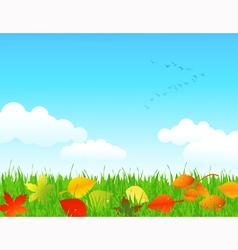 Autumn lawn vector image
