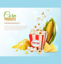corn products composition vector image