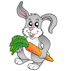 cute bunny holding carrot vector image