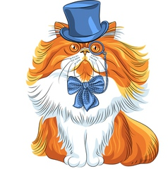 hipster cute red fluffy Persian cat in a blue hat vector image