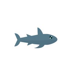 Marine life predatory shark cartoon sea fauna vector