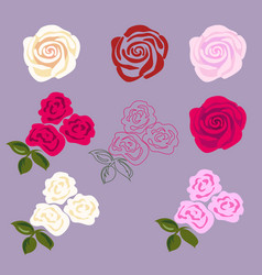 set of rose flowers vector image vector image