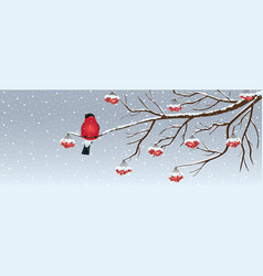 christmas background with birdie vector image