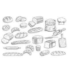 bread and bakery food sketches engraved pastry vector image