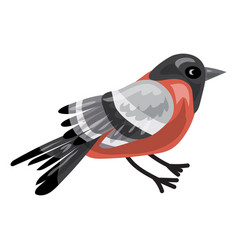 bullfinch icon cartoon style vector image
