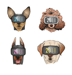 dog wearing sunglasses year of the dog 2018 vector image