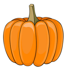 Pumpkin colored doodle vector