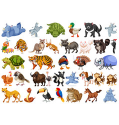 set of animals sets vector image