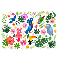 tropical collection for jungle party or tropical vector image
