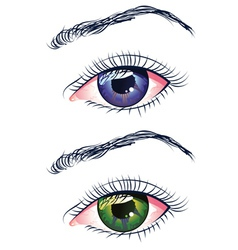 Violet and Green Eyes vector image
