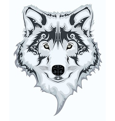 Wolf design vector