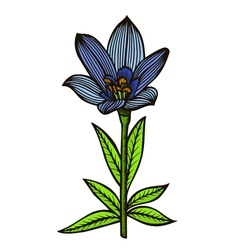 Blue spotty lily vector