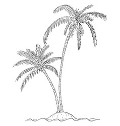 cartoon drawing two palm trees on small island vector image