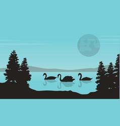Collection of swan on lake landscape vector