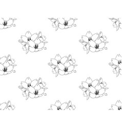 Sakura cherry blossom flower seamless on white vector