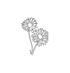 Single one line drawing beauty fresh centaurea vector