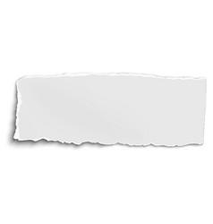 White oblong paper tear isolated on white vector