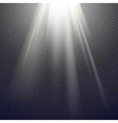 Light Effect Spotlight vector image vector image