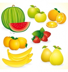 fresh fruits set vector image