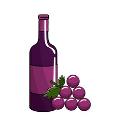 Bottle of wine and grape fruit tasty vector
