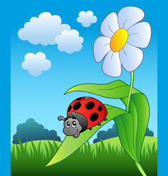 Cute ladybug with flower vector