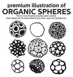 Organic Spheres vector image
