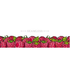 Raspberry border seamless pattern with fresh ripe vector