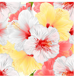 Seamless texture white pink and yelow hibiscus vector