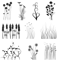 Set of plant vector