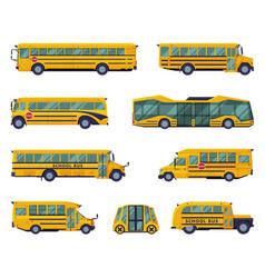 yellow school buses set back to school concept vector image