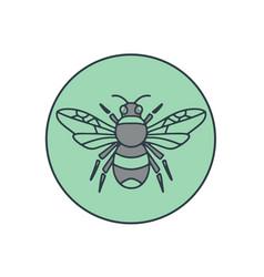 bumble bee circle mono line vector image vector image