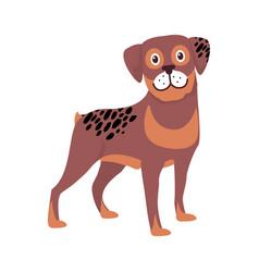 brown dog black spots symbol vector image vector image