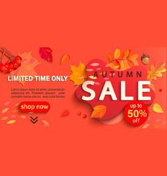 Autumn sale banner only limited time discounts vector
