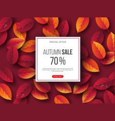 autumn sale banner with 3d leaves and dotted vector image