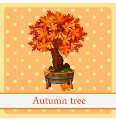 Autumn tree colorful symbol of autumn vector image