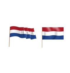 colorful naturalistic waving flag vector image