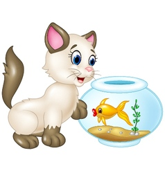 Curious cat playing with swimming fish isolated vector