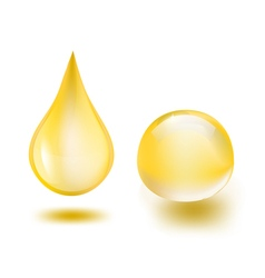 oil drops vector image