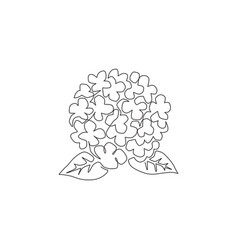 single continuous line drawing beauty fresh vector image