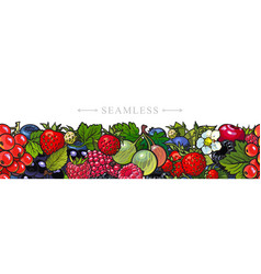 Sketch garden berries leaves and flowers seamless vector