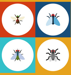 Flat icon buzz set of housefly gnat bluebottle vector