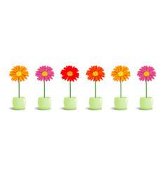 flowers in pots stock vector image