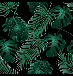 Green tropical palm leaves and monstera jungle vector
