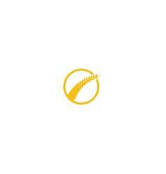 wheat grain agriculture logo design inspiration vector image