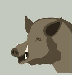 wild boar flat style vector image
