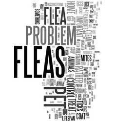 yikes i saw a flea on my dog text word cloud vector image