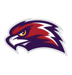 Hawk head mascot logo vector