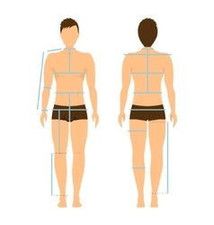 Man Body Front and Back for Measurement vector image